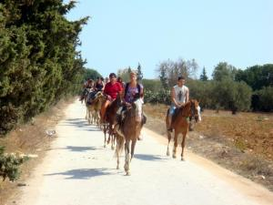 Riding On Horse Tour